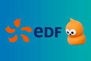 case study EDF